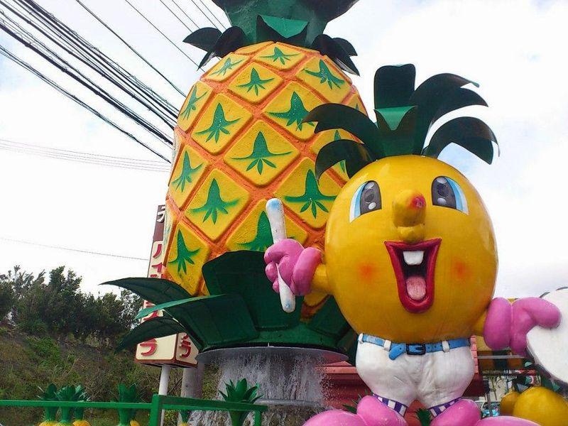 沖繩鳳梨樂園,帶你參觀鳳梨田。(圖/來源)