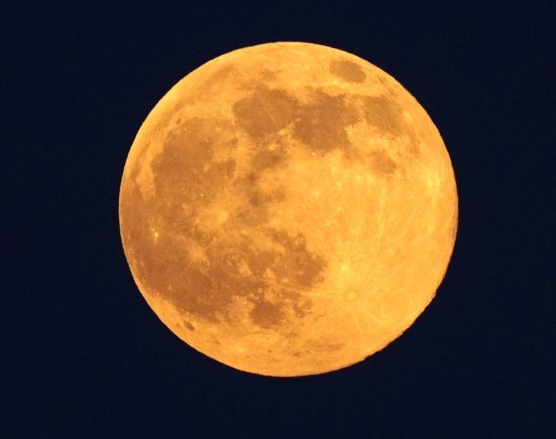 藍月。(蘇仲泓攝)