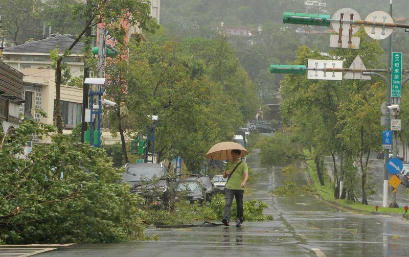 蘇迪勒颱風(葉信菉攝)