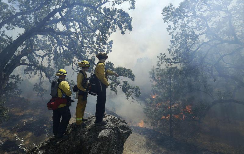 加州的森林大火和消防人員(美聯社)。