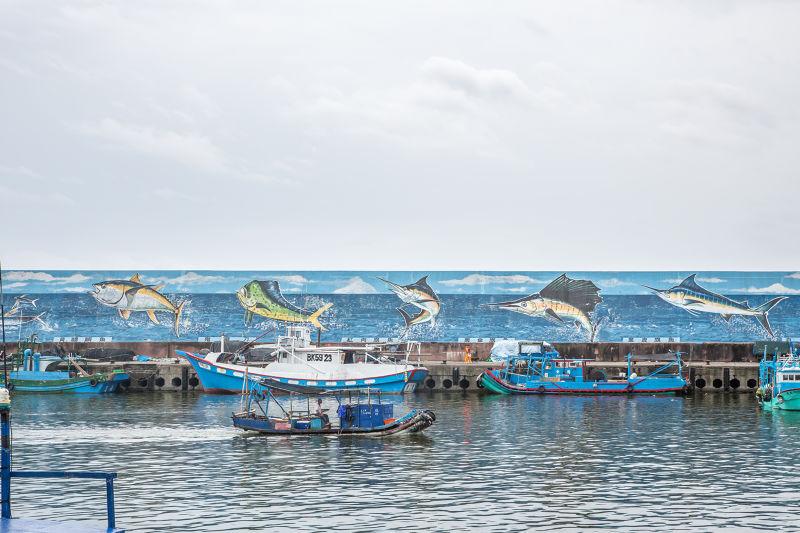 相傳日治時期傳入台灣   台東成功鎮 東北季風  10月至11月 旗魚 (圖/行人文化實驗室)