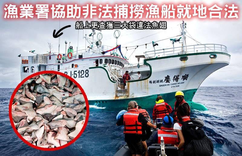 綠色和平彩虹勇士號巡航船9日在太平洋公海發現一艘台籍非法漁船,在沒有執照狀況下非法捕鮪魚。(取自GREENPEACE綠色和平(台灣網站)臉書)