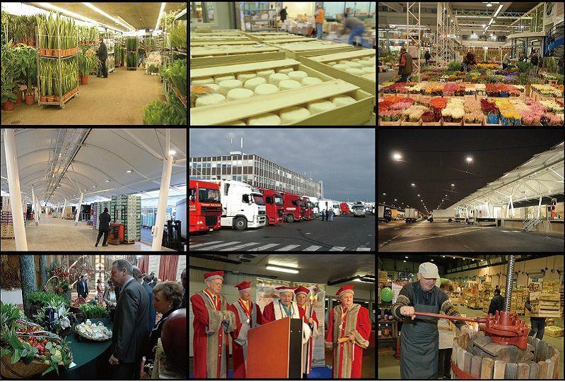 Rungis Market 配送行銷情況。(圖片來源:Rungis website).