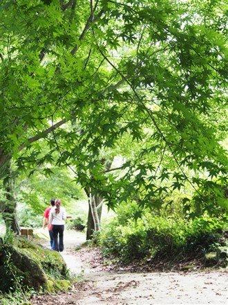 無論什麼時節走入庭園,都能體驗一場精緻的繽紛盛宴。(圖/劉宸嘉攝)