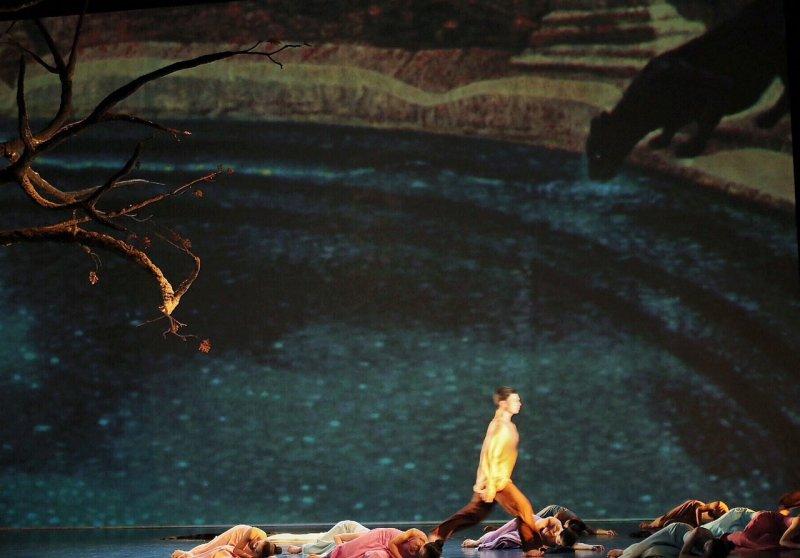 《烟》舞台一角巨大枯樹聳立,投影呈現連建興超現實的畫作,淹水的房間海龜浮游,綠水的池畔黒豹凝視,黑衣女子穿梭在故人舊事的回憶。(林韶安攝)