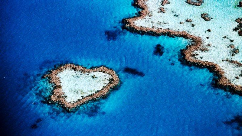 心型珊瑚礁是求婚和渡蜜月最受歡迎的浪漫景點 圖/lifepopper.com