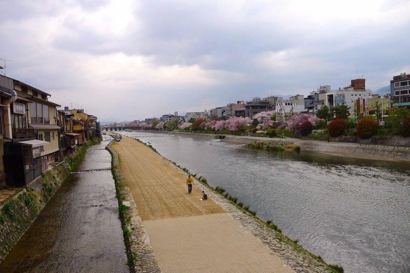 鴨川在四条這兒的一條沙洲,成為京都人嘻戲之地