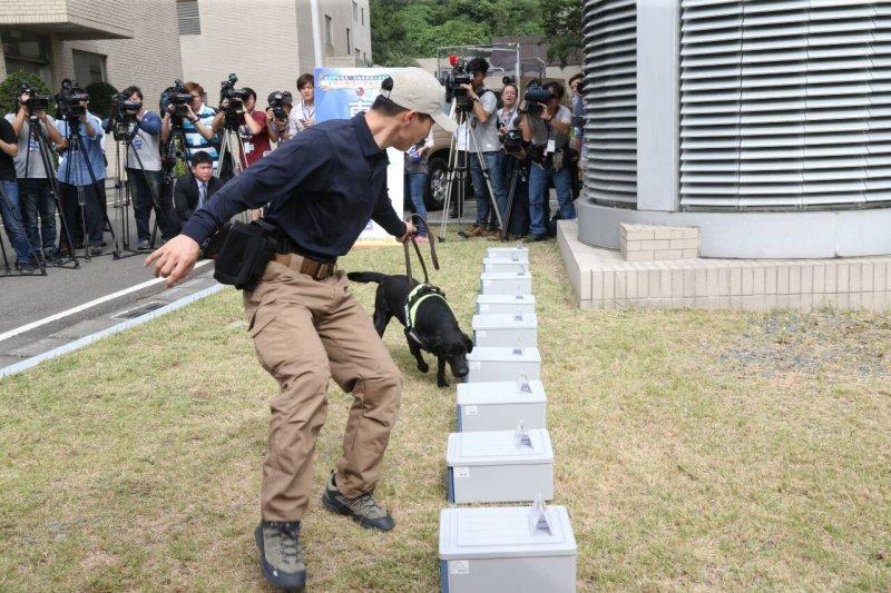 20151113-SMG0045-005-總統維安工作-拉布拉多入列-放置炸藥-拉布拉多聞-陳明仁攝.jpg