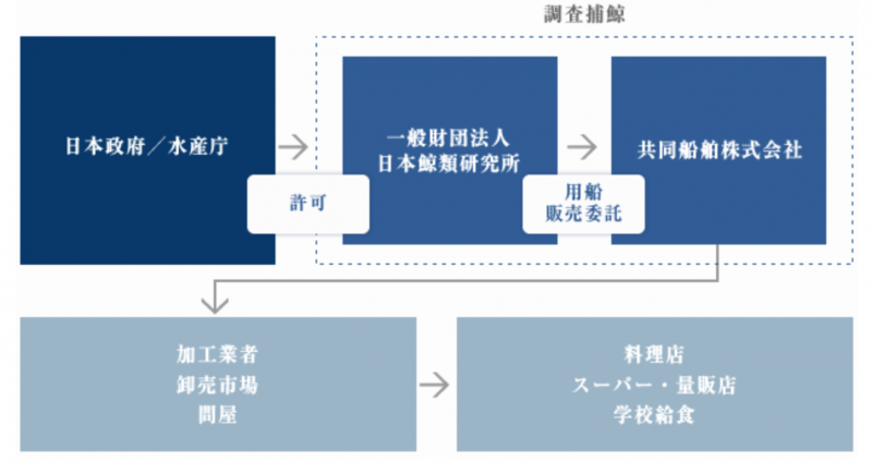 日本水產廳、鯨類研究所、共同船舶株式會社的相互關係。