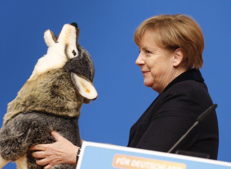 德國總理梅克爾獲得狼填充玩偶作為禮物(美聯社)