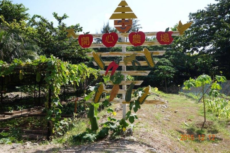 總統馬英九14日在臉書分享午餐菜色,當中的清炒秋葵、山苦瓜、絲瓜湯等蔬菜,都是來自1600公里外的太平島。圖為太平島上的「開心農場」。。(取自內政部)