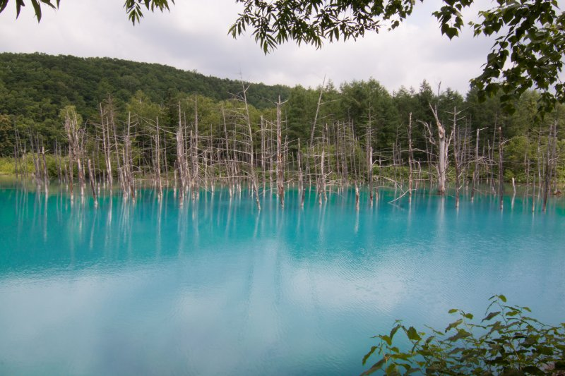 藍綠色的池水,是火山礦物質折射的成果。(圖/ysykNovember@Flickr)