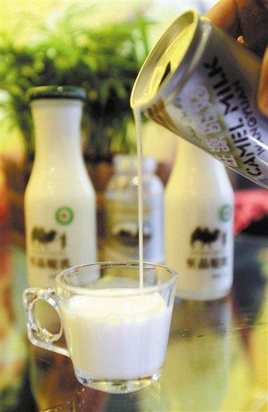 相較於一般市面上的乳製品,駱駝奶價值不斐。數年前在中國杭州上市的駱駝奶,宣稱對糖尿病和腎病具有療效,180ml要價48元人民幣;據曾嚐過的消費者表示,駱駝奶味道有點「鹹」。(取自網路)