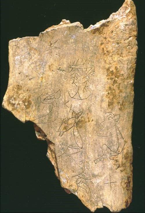 中研院收藏的甲骨。(作者提供)