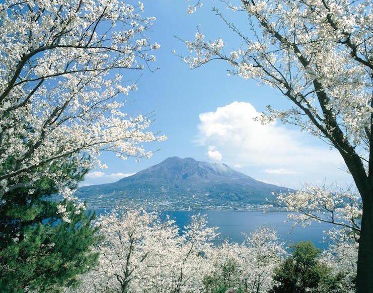 20160218kagoshima1.jpg