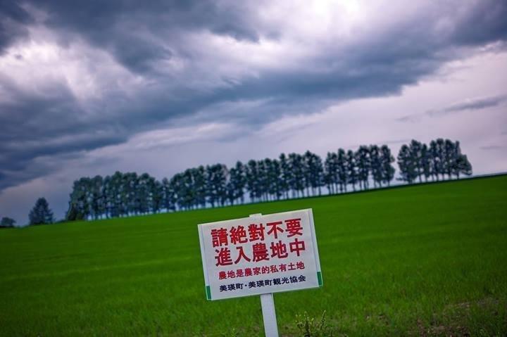 當地農民直接在NHK電視台前往採訪時表示,確實是針對台灣民眾。圖/Wise Lee@facebook