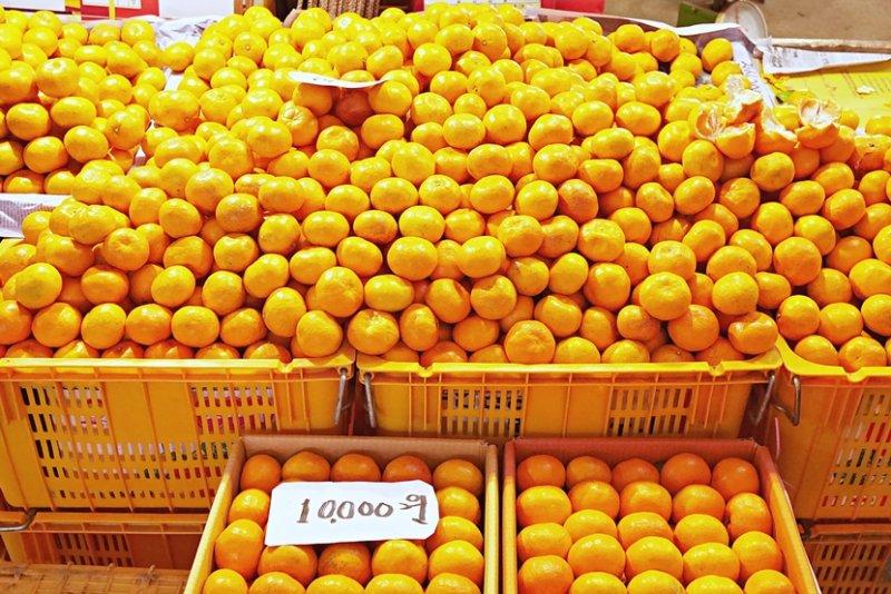 琳瑯滿目的新鮮農產品、手工醬菜無法打包帶走,可以買袋濟州小柑橘現吃。(圖/時報出版提供)