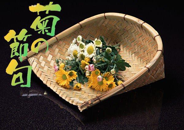日本重陽節即菊花節