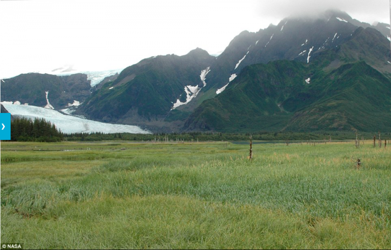 2005年阿拉斯加的Pedersen冰河。(圖/NASA)