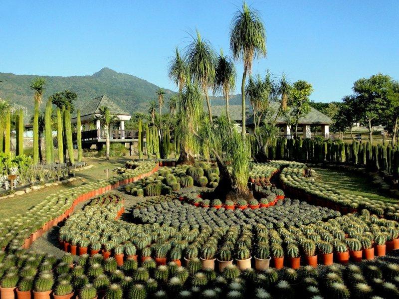 大路觀主題樂園,結合了峇里島建築設計生態、水樂園特色,也以在地農產及食材烹調各式美食以饗顧客。(觀光局提供)