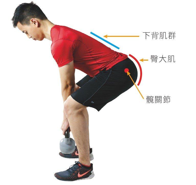 彎身撿物品所使用的肌肉和關節位置(圖/三采文化提供)