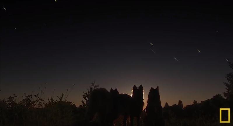 天空劃下的不是流星,而是人造衛星的殘骸。(圖/#Mind Warehouse@youtube)