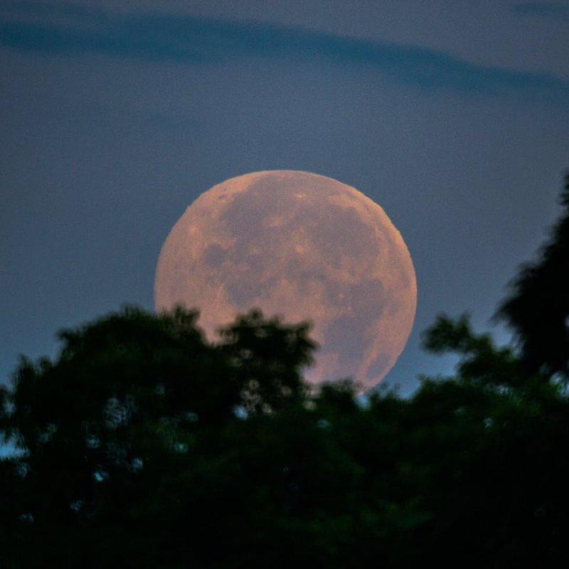 夏至滿月是今晚夜空的重頭戲。(圖/Earthsky@Facebook)
