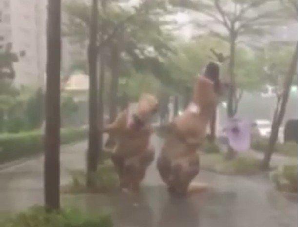 尼伯特颱風恐龍。(取自萬安恐龍哥臉書)