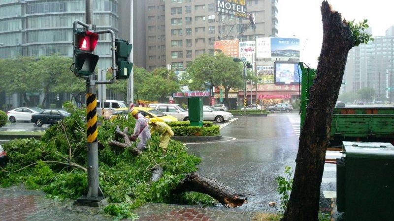 尼伯特颱風來襲,清除高雄街道被颱風折斷及傾倒的樹木。(高雄市政府提供)