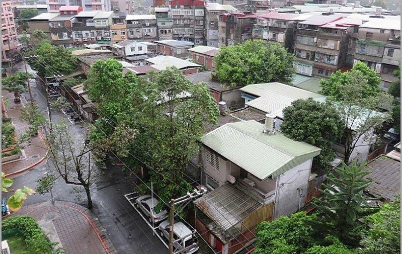 化南新村是都市的綠肺,保有都市難見的各類生態(BB團隊攝影/陳淑美提供)