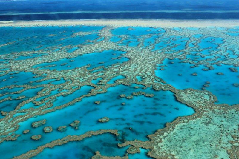 澳洲昆士蘭曾在2009年招募「世界上最理想工作」—大堡礁島主。(圖FarbenfroheWunderwelt@flickr)