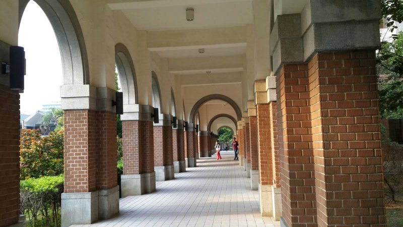 台大校園。(風傳媒)