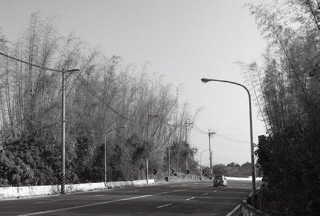 p112-層林:每一個轉彎,都能遇見不同的風景.jpg