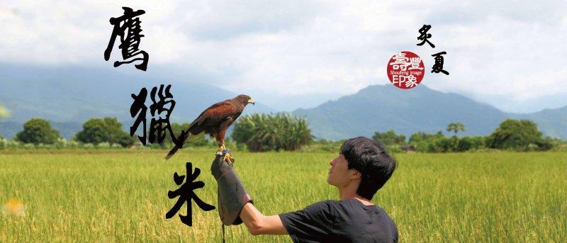 104年青年村落文化行動獲獎計畫「壽豐印象計畫」。(圖取自壽豐印象臉書)