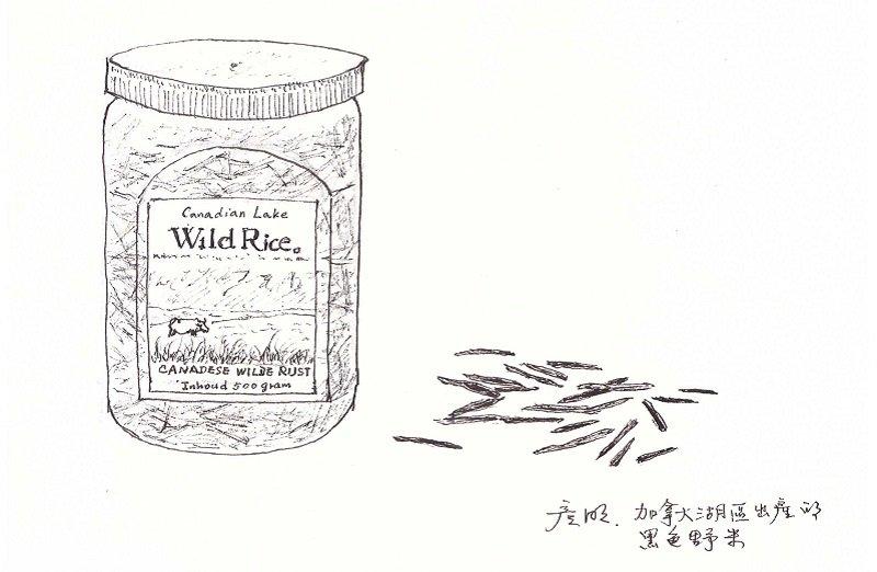 這是加拿大的野米。(作者手繪/印刻文學提供)