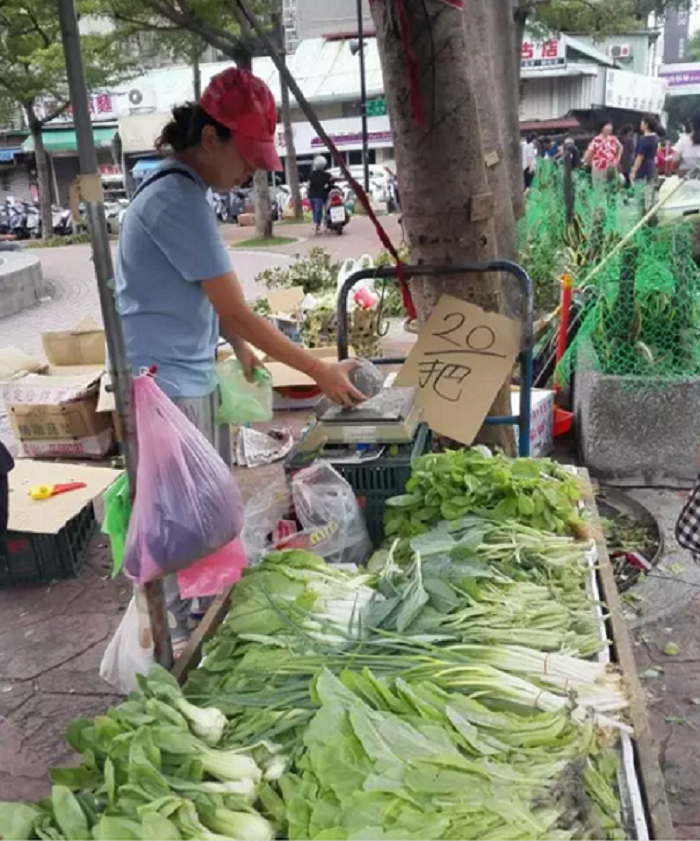 颱風過後,青嫩的蔬菜格外誘人。(作者提供)