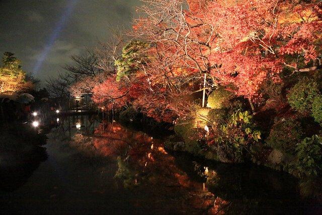 清水寺夜楓(圖/Norio NAKAYAMA@Flickr,hotelscombined提供)