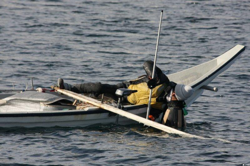 每到1至5月,羅臼約80名海膽漁師便在會每早六點到十二點出海,出發前先說好當天最多可捕的海膽量,回航後一起拿到漁協決定當日價錢。每艘船大約可捕80隻。(圖/MATCHA提供)