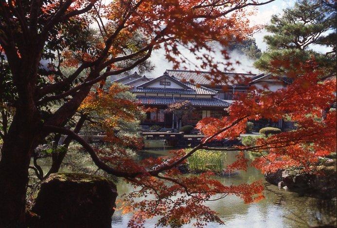 在紅葉的承托下,有著一種日本特有的意境和美感。(圖/ZEKKEI Japan提供)