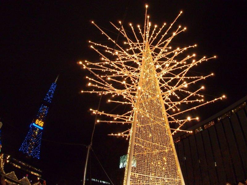 這顆看似樹的燈飾其實不是樹, 而是宇宙的領域。由於形狀細長又高, 很適合與札幌電視塔一同入鏡, 為人氣攝影燈飾之一。(圖/MATCHA提供)