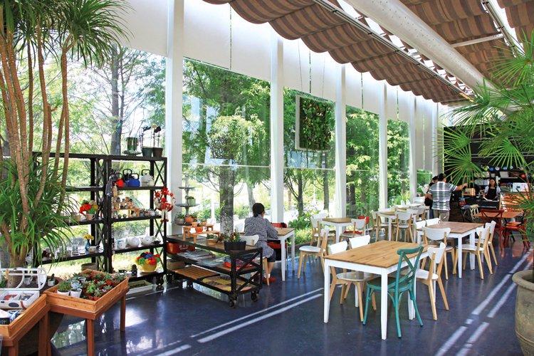 沙丘南特溫室玻璃屋。