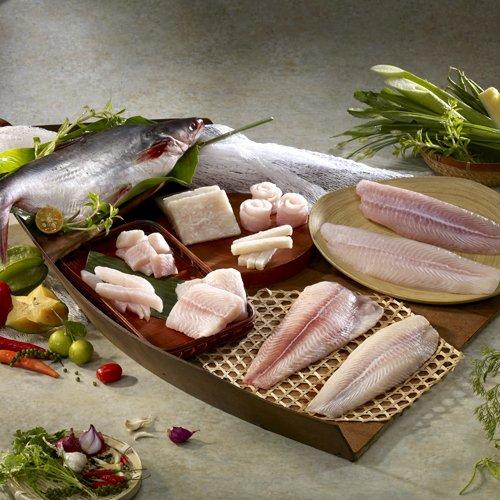 巴沙魚為越南國魚,又稱鯰魚、多力魚,在越南有 49間鯰魚加工企業已被授予全球的GAP(魚類加工企業總數的45%),其生產成本和國際市場價格均優於台灣鯛。(取自台灣海葡萄食品)