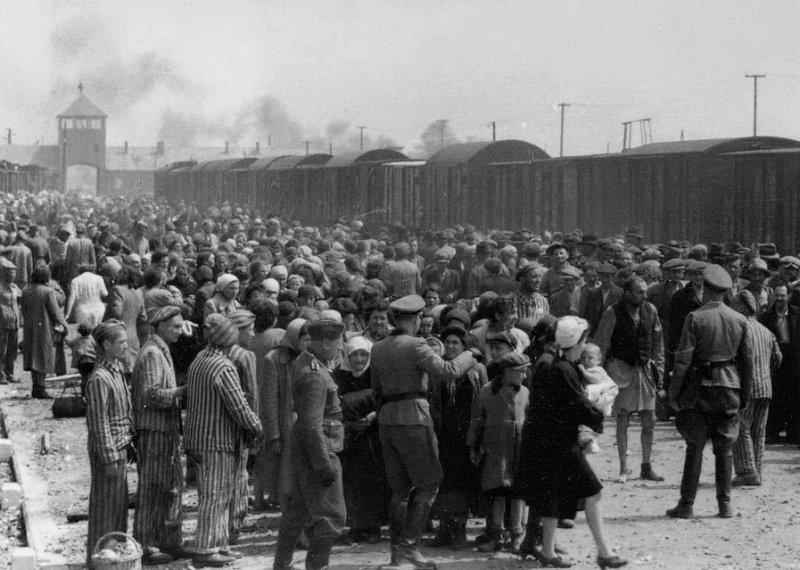 身穿軍服的納粹正在將猶太人分成2群,一群送往勞動營,一群準備送去毒氣室。(圖/維基百科公有領域)