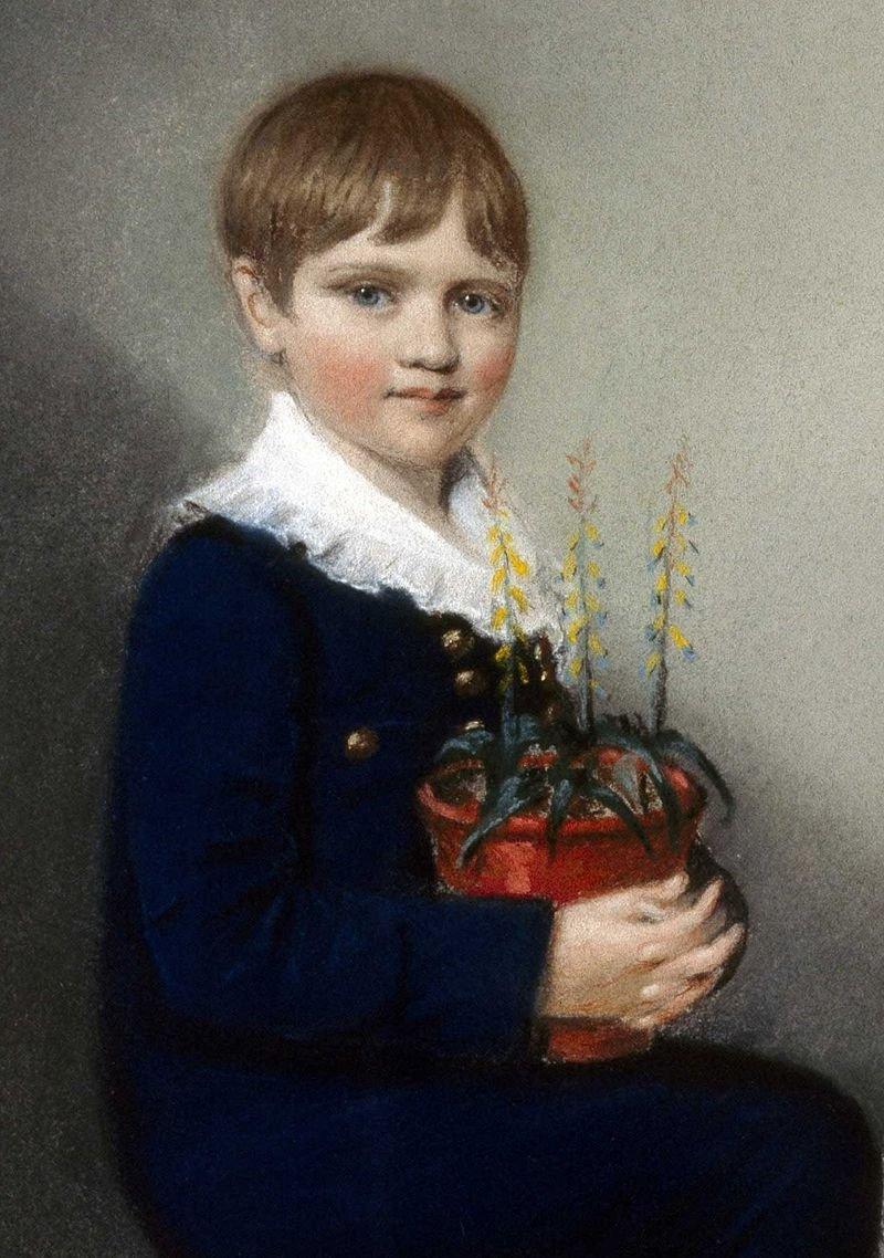 達爾文七歲時的畫像。(wikipedia/public domain)