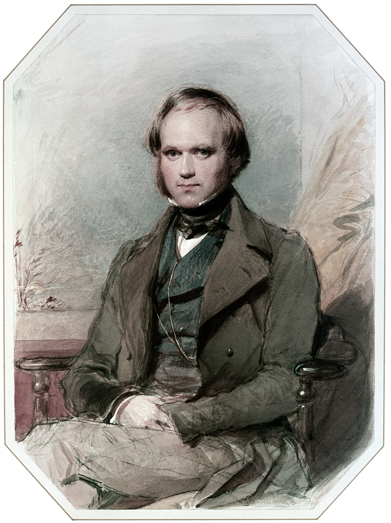 二十多歲時的達爾文。(wikipedia/public domain)