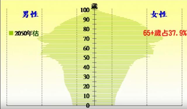 2050年的人口金字塔圖。(圖/文 呂紹煒)