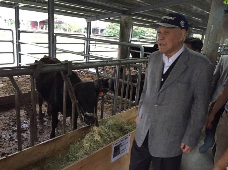 李登輝今(8)日由李登輝基金會秘書長王燕軍陪同到花蓮兆豐農場關切養牛事業。(取自李登輝臉書)