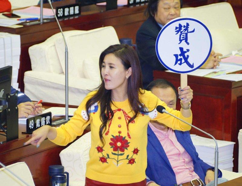 20170109-台北市議會進行總預算表決,議員王欣儀代表國民黨發表意見。(盧逸峰攝)