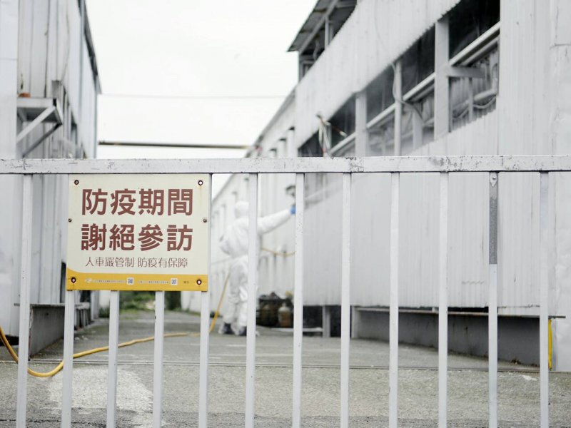 農委會主委林聰賢上任第二日即趕赴蘇澳,勘查H5N6疫情防疫。(農委會提供)