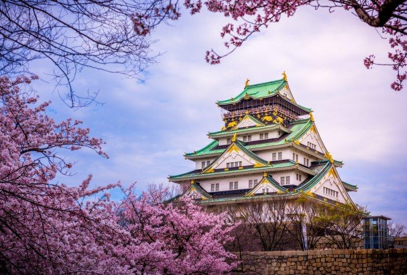 櫻花樹下的大阪城,綠屋頂與粉紅的完美結合(圖/KLOOK客路提供)